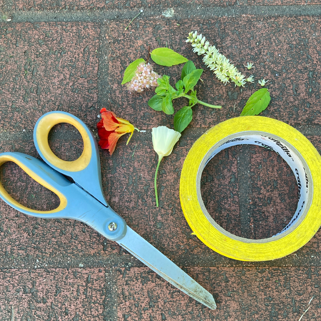 Scissors, tape, leaves and flowers.