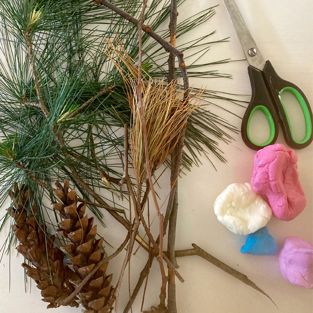 Natural materials including pinecone, fir branches, and twigs.