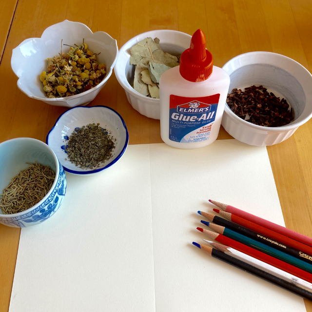 Bowls of dried herbs, glue, pencils, and paper.