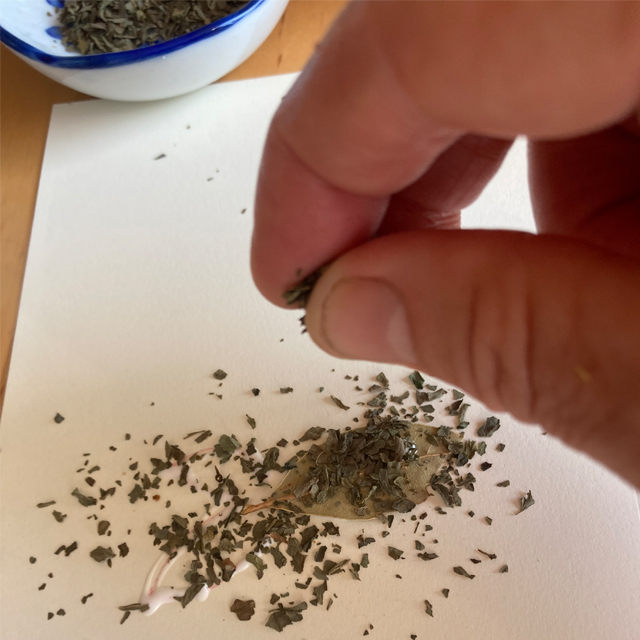 Sprinkling dried herbs onto glue on paper.