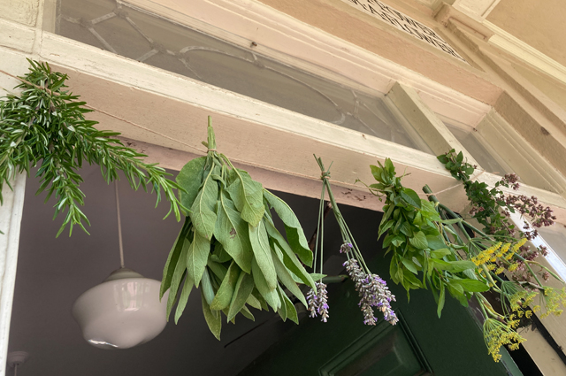 Rosemary, sage, lavender, mint, fennel and oregano hanging from a string.
