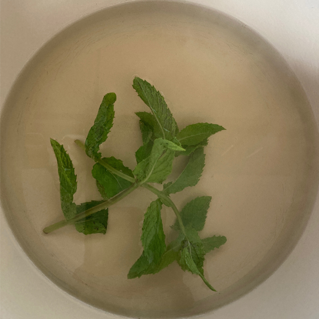 Mint in a pot with water and sugar.