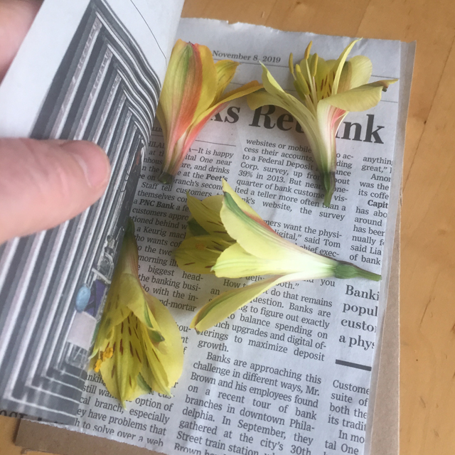 Flowers placed inside of two pieces of newspaper.