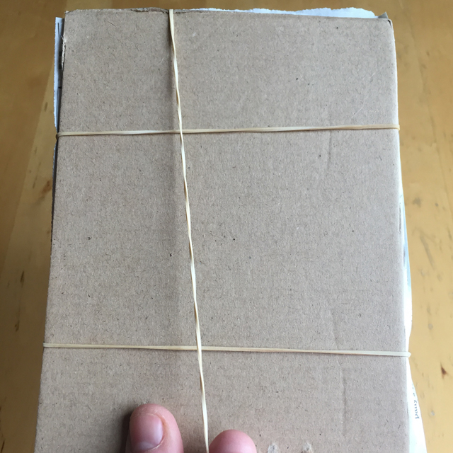 Cardboard plant press with rubber bands around it.