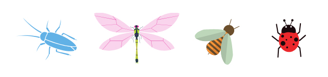 Pictures of insects (dragonfly, bee, ladybug)