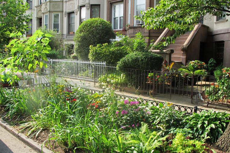 Designing a Small Urban Garden
