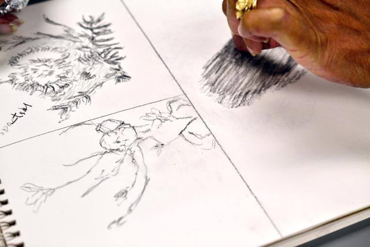 Sketchbook Nature Journal