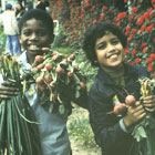 Photo of two children with vegetables they harvested.