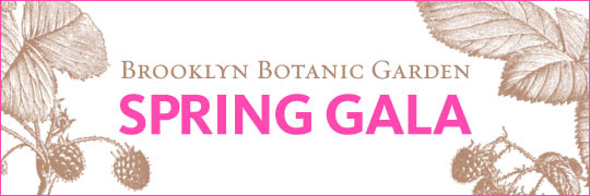 Spring Gala 2014 Tickets