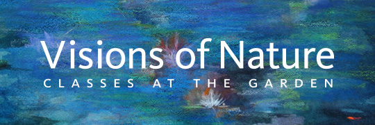 Visions of Nature 2013: Classes at the Garden