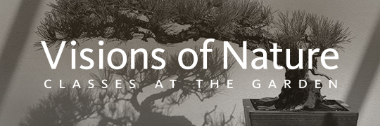 Visions of Nature 2014: Classes at the Garden