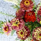 Bodega Blooms