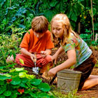 Children's Garden Insider Tours