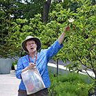 Native Plants Guided Tour