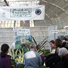 Plant-O-Rama
