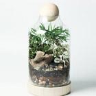 The Lucky Gardener Terrarium Workshop