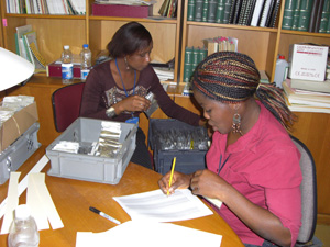 Staff check seed accession numbers at a Nigerian gene bank.