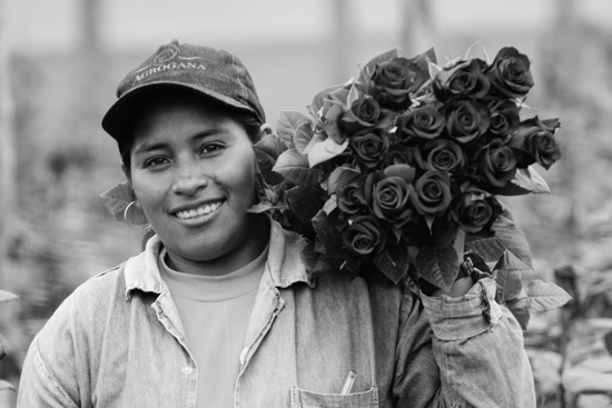Elvia Almachi, a flower worker in Ecuador, has acquired pigs through a fair trade premium program. (Photo courtesy of TransFair USA.)