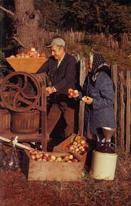 photograph of a sweet older couple at a cider mill