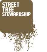 Street Tree Stewards