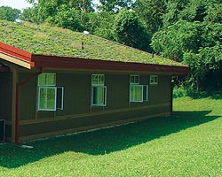 This green roof cools in the winter, absorbs rainwater and extends the lifetime of the roof membrane.