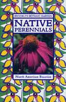 Native Perennials: North American Beauties