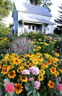 Filled with a riot of colors, shapes, and wonderful scents, a flower garden in bloom is a feast for all our senses, as well as a source of food and shelter for birds, insects, and other wildlife.