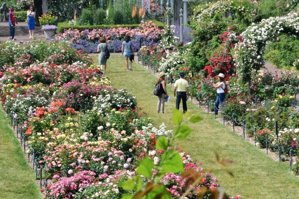 Visit brooklyn botanic garden - Brooklyn botanical garden admission ...