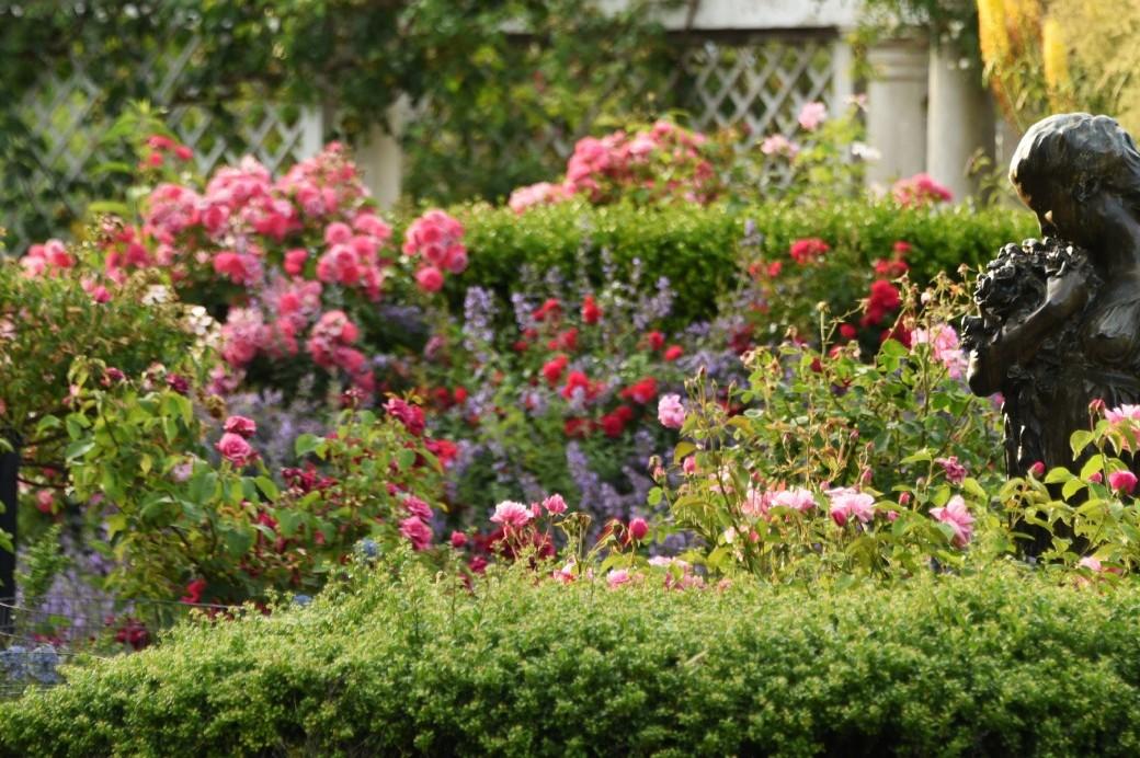 Hours admission brooklyn botanic garden - Brooklyn botanical garden free admission ...
