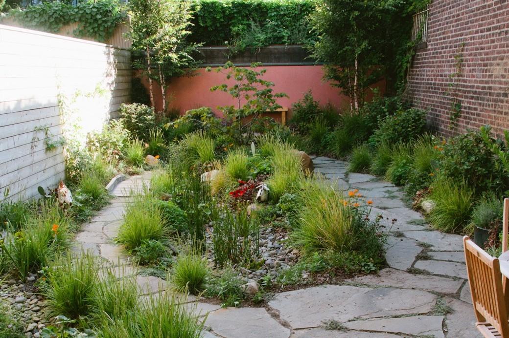 A Brooklyn Backyard Rain Garden and Green Roof Brooklyn