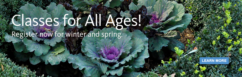 Classes for all ages! Register now for winter and spring.