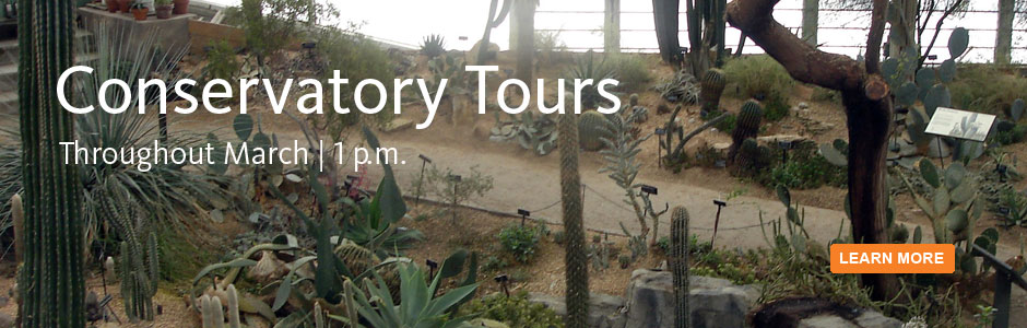 Conservatory tours. Throughout March
