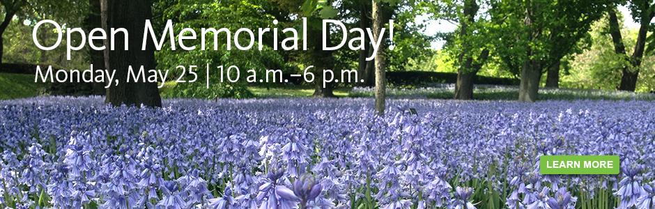 Open Memorial Day.