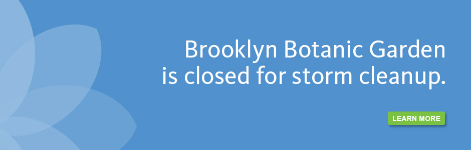 BBG is closed for storm cleanup.