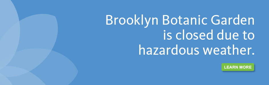 BBG is closed due to hazardous weather.