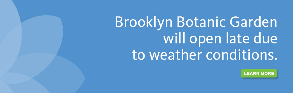 BBG will open late due to weather conditions.