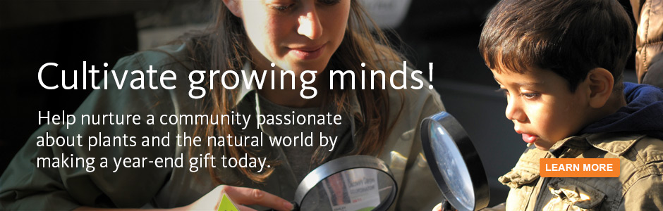 Cultivate growing minds! Help nurture a community passionate about plants and the natural world by making a year-end gift today.