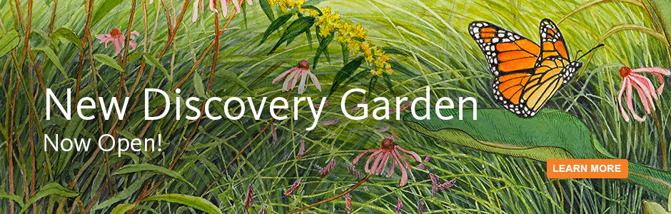 New Discovery Garden! Opens Saturday, June 6.