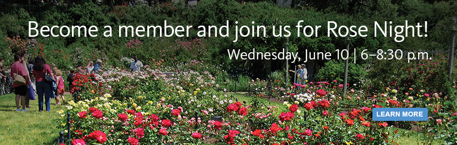Become a member and join us for Rose Night! Wednesday, June 10.