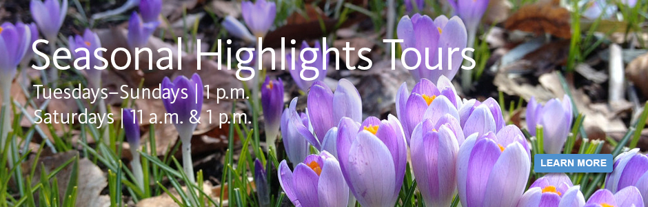 Seasonal Highlights Tours