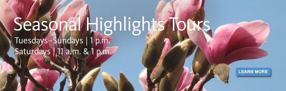 Seasonal Highlights Tours