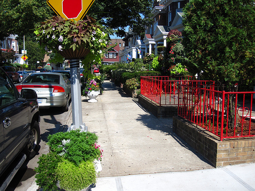 The Greenest Blocks in Brooklyn Are in Flatbush and Boerum Hill!