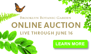 Brooklyn Botanic Garden Online Auction. Live through June 16.